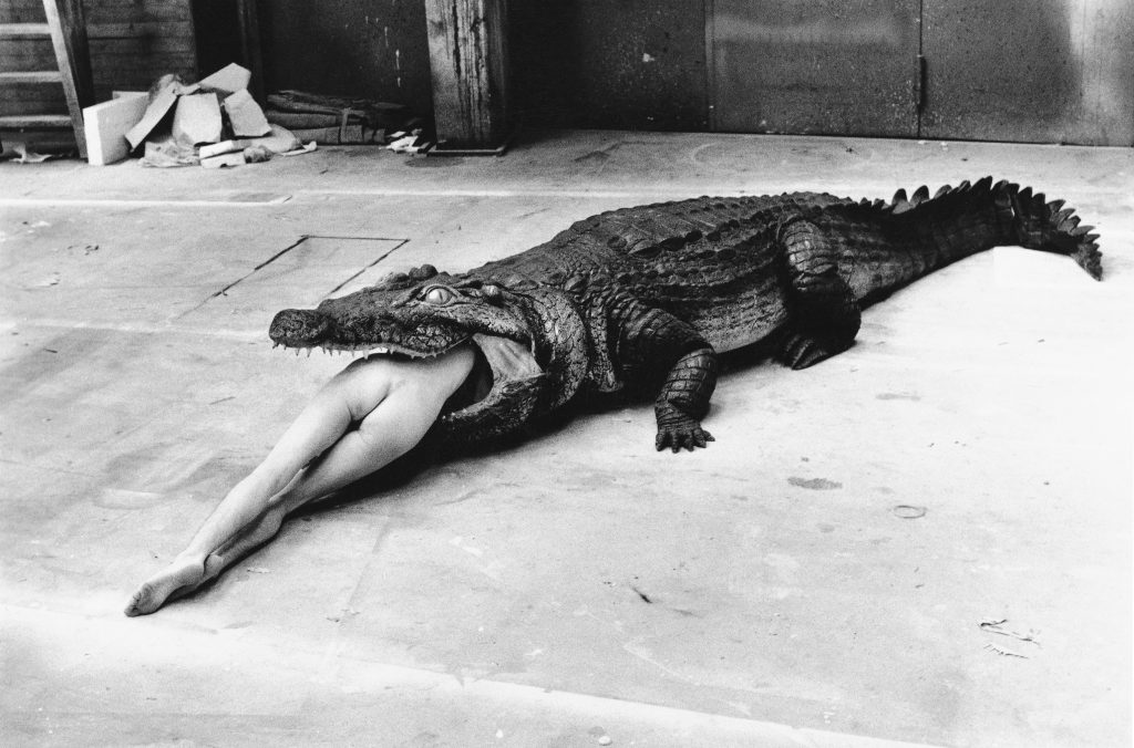 HELMUT-NEWTON_004_Crocodile,-Wuppertal,-1983-(c)-Foto-Helmut-Newton,-Helmut-Newton-Estate-Courtesy-Helmut-Newton-Foundation